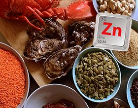 Zinc – consume alimentos ricos en Zincpara mejorar tu sistema nervioso auditivo y disminuir la intensidad del zumbido de oídos